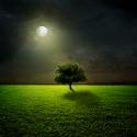Post Thumbnail of Quel lien entre pleine lune et sommeil ?