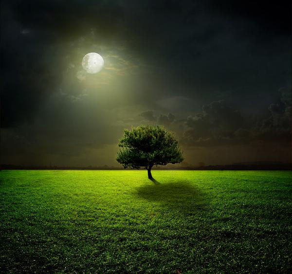 Quel lien entre pleine lune et sommeil ?